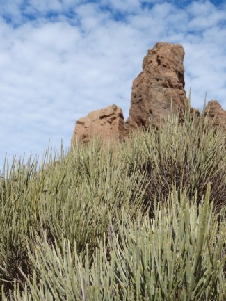 Fauna und Felsformationen