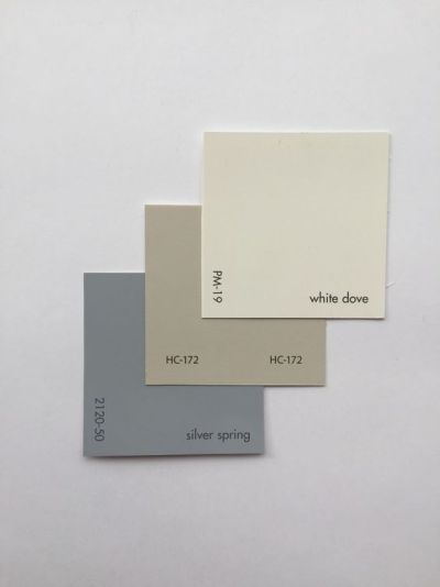 White dove, revere, silver