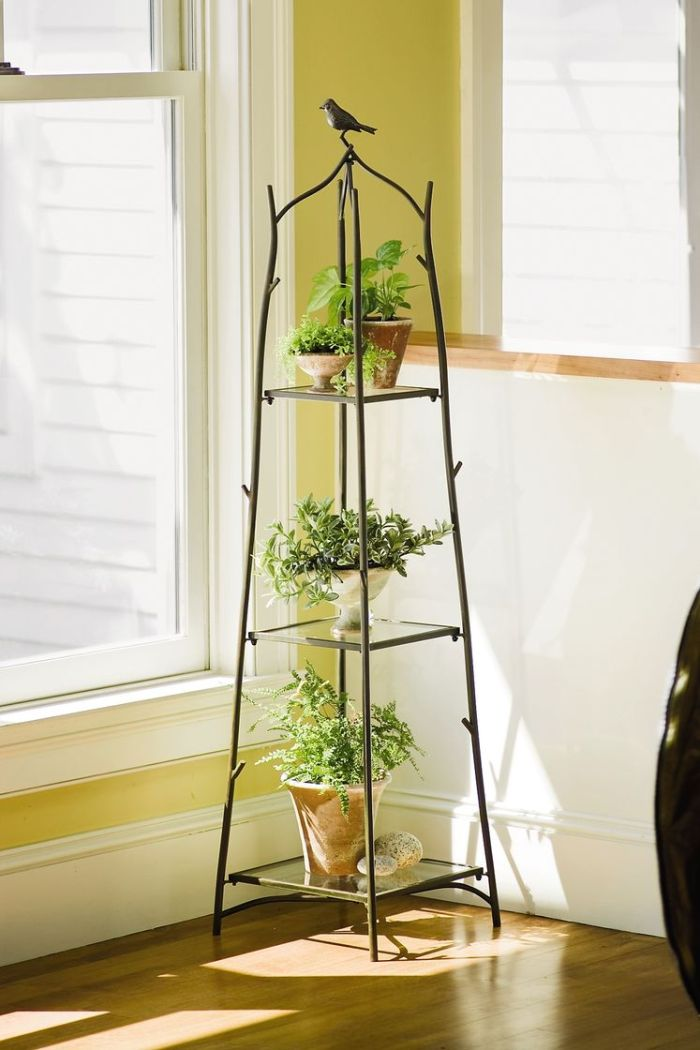 Plant Stands for your darling house plants 6