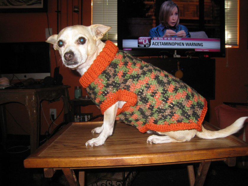 Instant Karma Dog Sweater