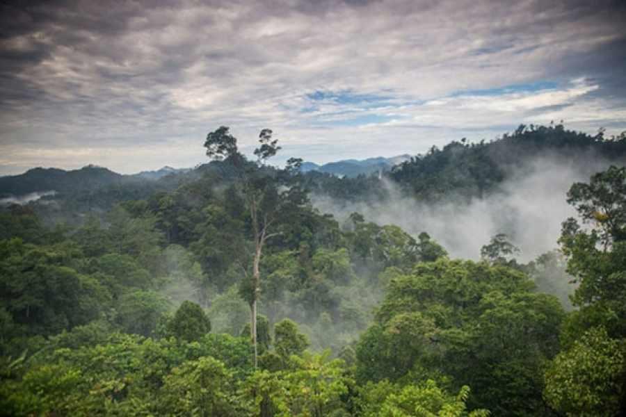 Grave/Tarija: Sin Tariquía el valle central Puede quedar sin lluvias