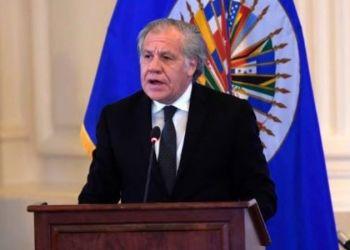 Luis Almagro, secretario general de la Organización de Estados Americanos Foto: EFE.