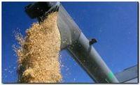 ECONOMÍA: La suba de los granos y las lluvias le dan aire al Gobierno