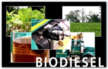 ECONOMÍA: Anuncian aumento del 8 al 10 % del corte del gasoil con biodiesel