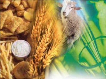 JORNADA PARA PRODUCTORES: Estímulos para promover la agroecológica en el sudeste bonaerense