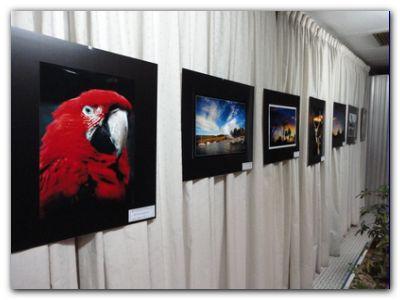 NECOCHEA: Muestra fotográfica en el Casino