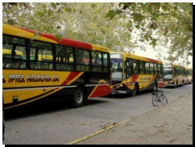 NECOCHEA: El boleto plano de 23,22 pesos sólo lo abonará el 25% de los usuarios informó el Municipio