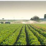 AGRO: Evalúan las vías legales para eliminar las retenciones