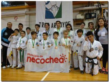 TAEKWON-DO: Necochea presente en el 6to Campeonato Tres Arroyos
