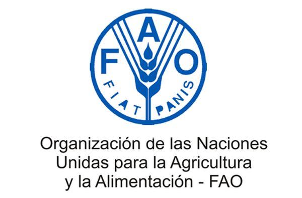 AGRO: La FAO reconoció a un campo de Benito Juárez donde se produce sin agrotóxicos