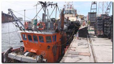 NECOCHEA: Se abrió la temporada de anchoas y ya comenzaron a arribar las lanchas