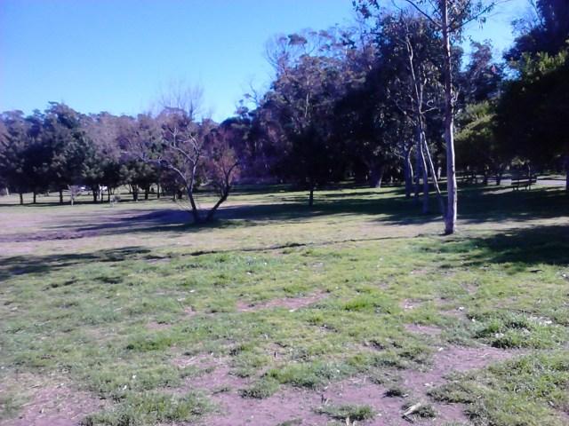 EDITORIAL: Hablemos claro. El Parque Miguel Lillo es un objetivo de negocios inmobiliarios