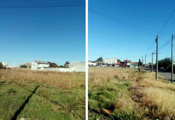 NECOCHEA: Se buscan dueños de lotes y propiedades abandonadas