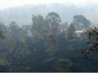 Los bomberos australianos libran batalla contrarreloj ante nueva subida de temperaturas