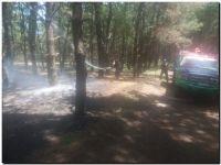 Incendio en el Parque Lillo. Poca información y decisiones apresuradas