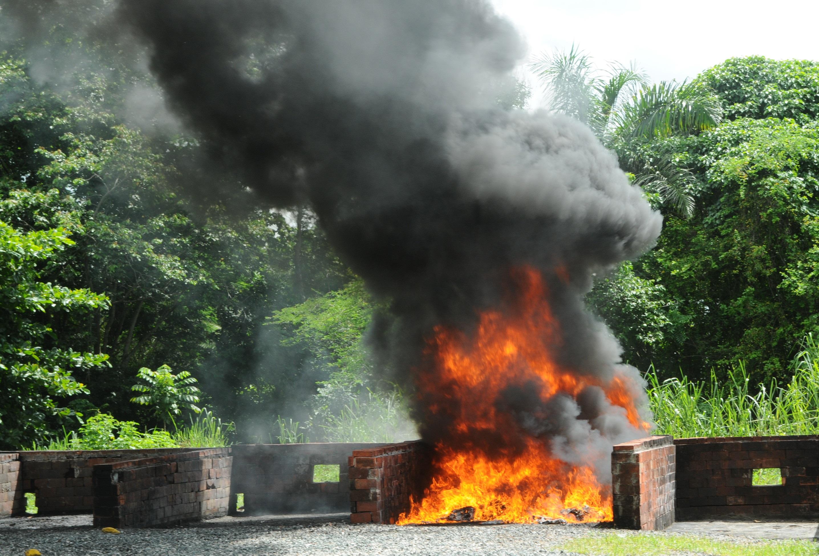 La Procuraduría incinera  56 kilos de drogas