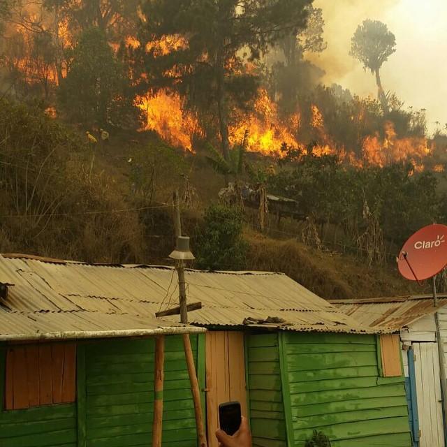 Apresan a 13 personas acusados de provocar los incendios forestales en el país
