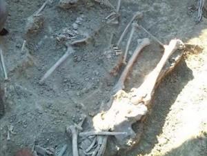 Hallan supuestos restos de expedicionarios antitrujillistas