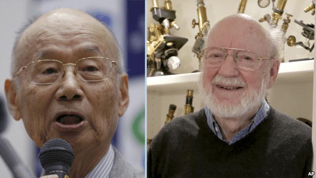 Un japonés y un canadiense galardonados con el Premio Nobel de Física 2015