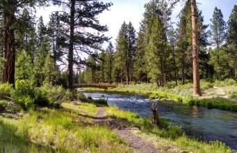 Parques naturales.