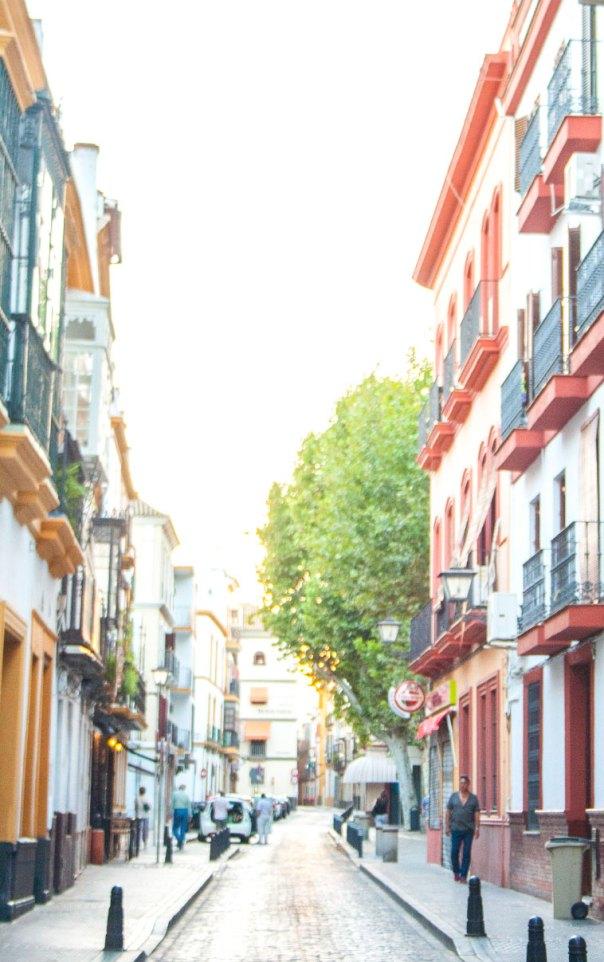 Sevilla-San-Lorenzo-7