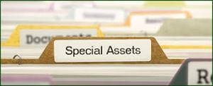activos únicos