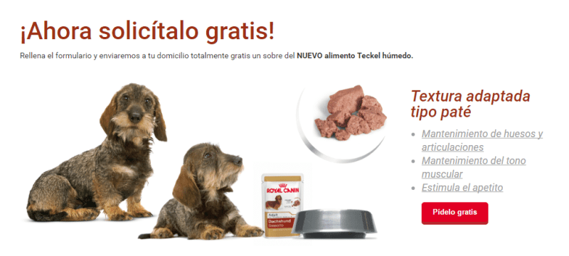 Muestras gratis de comida para perros Royal Canin