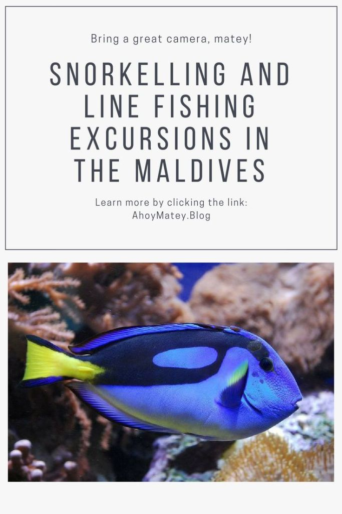 Snorkelling And Line Fishing Excursions In The Maldives