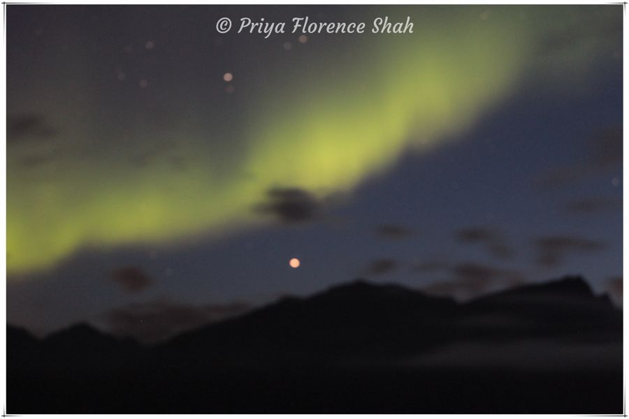 The Northern Lights on the first night at Lyngen North