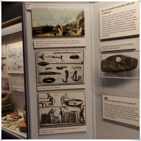 Did stone-age people live on Svalbard asks this exhibit showcasing life in the Arctic
