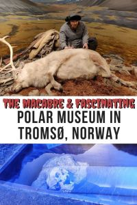Exploring The Macabre And Fascinating Polar Museum In Tromsø, Norway