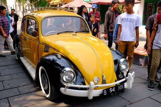beetle in town