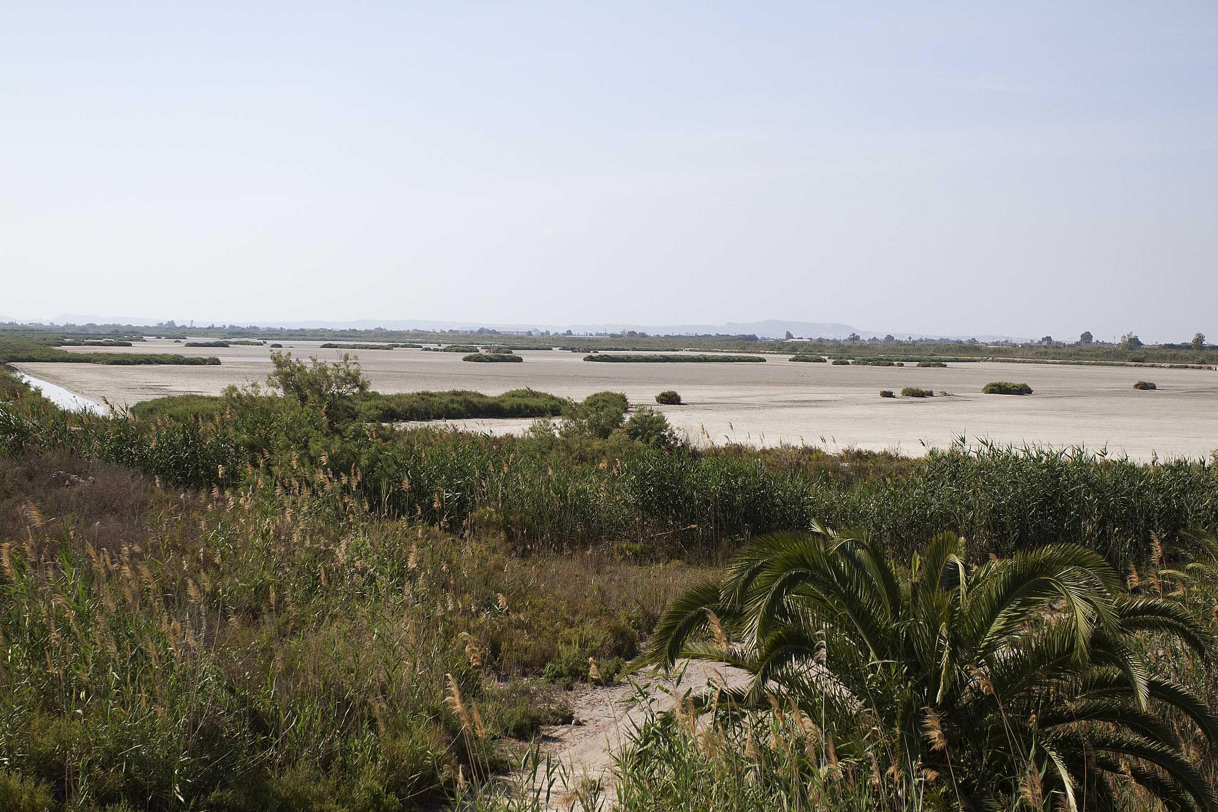 Coto de la Raja completamente seco durante la primavera de 2014 (S. Arroyo)