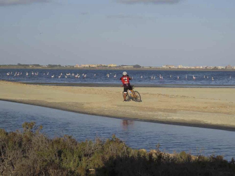 Continuas molestias a las aves en la laguna de La Mata (S. Arroyo)