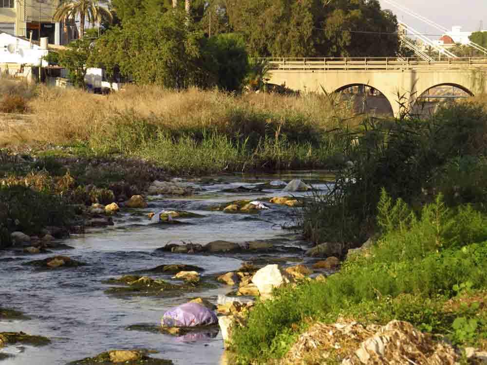El entorno de puente de Barrachina con basuras domésticas y restos de toallitas en las orillas