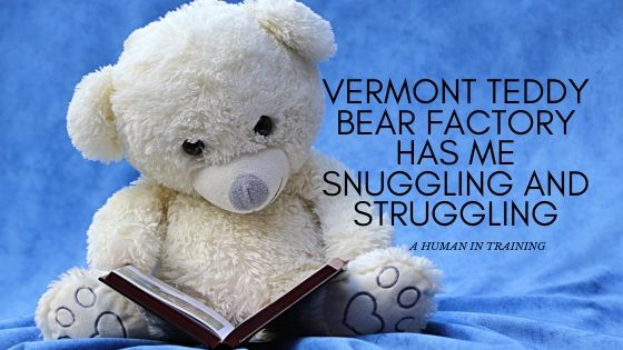 white teddy bear from the vermont teddy bear factory reading a book
