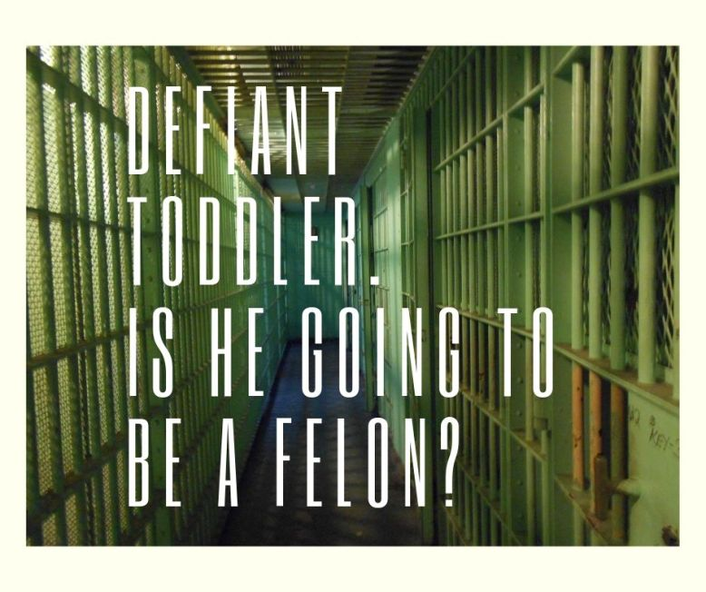 jail cells that could house a defiant toddler.
