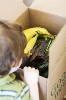 While lunch is steaming, B opens the Door-to-Door Organics box which was delivered while we were gone. I think this is a highlight of his week.
