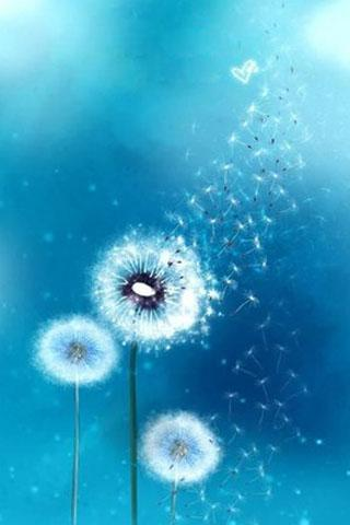 Keywords Samsung Galaxy S3 Wallpaper Dandelion And Tags