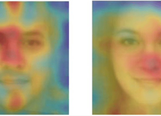 This screencap is taken from a research paper entitled 'Deep neural networks are more accurate than humans at detecting sexual orientation from facial images'. The picture shows a heatmap produced by a computer of different facial features used to identify sexual preference by a facial recognition identifier.