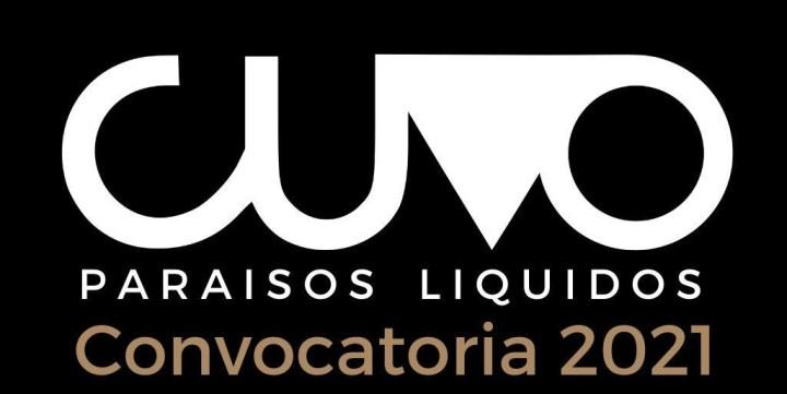Nueva Convocatoria CUVO 2021 – Festival de Videoarte
