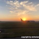 夕日の中を滑走するJAL機