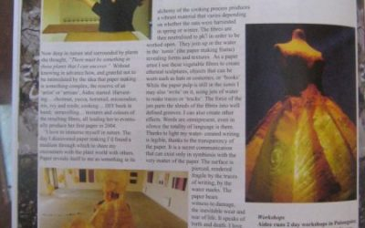 Article dans the artiste