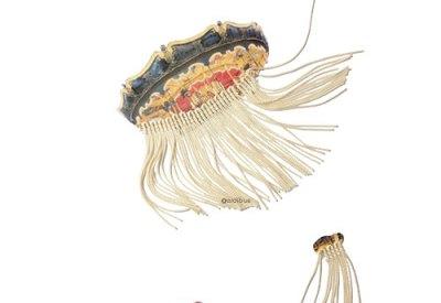 medusas charleston
