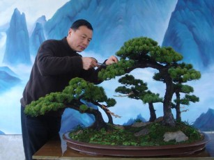 qingquan-zhao-styled-tree