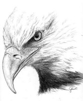 patriotic eagle head clipart