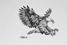 tiny_eagle_design_by_ryanmonsterholmes-d4pvi9u