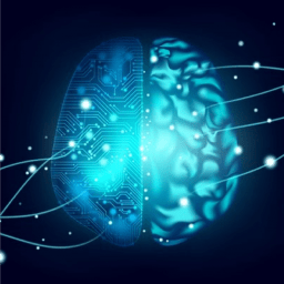 AI Brain - Training artificial intelligence systems with multimodal data