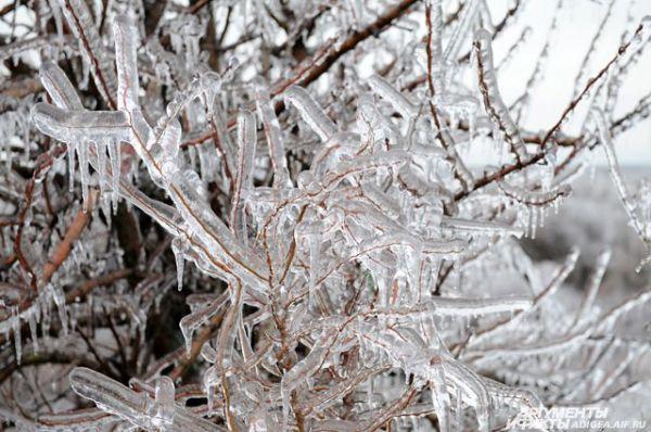 Ледяной дождь прогнозируют в Ростове-на-Дону | ОБЩЕСТВО ...