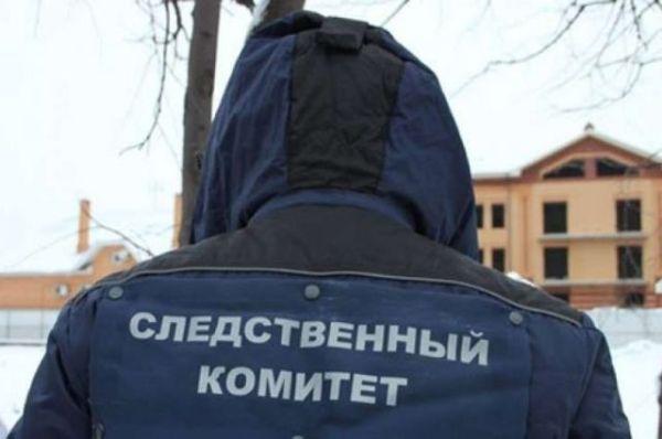 На улице в посёлке под Тверью нашли тело замёрзшей 17 ...